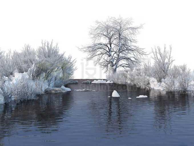 冬天被积雪覆盖的灌木丛和大树以及潺潺流水的小河风景8083135免抠图片素材免费下载