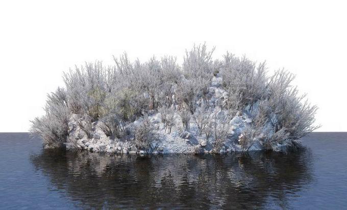 冬天被积雪覆盖的湖心小岛上的灌木丛和大树风景6023301免抠图片素材免费下载 生物自然-第1张
