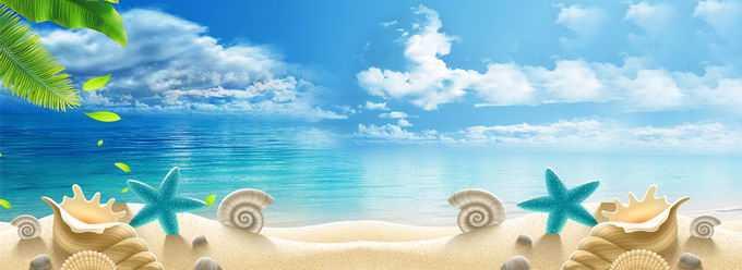 蓝天白云蔚蓝色的大海和沙滩上的各种贝壳海星横版背景图5595616免抠图片素材