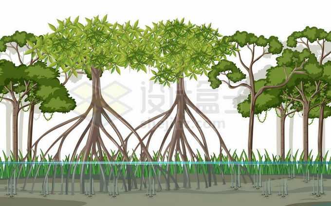 水位高涨的红树林热带雨林2353694矢量图片免抠素材免费下载