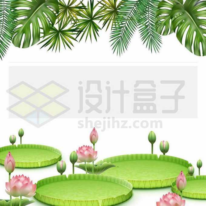 热带树叶和睡莲王莲叶子莲花装饰5524444矢量图片免抠素材免费下载