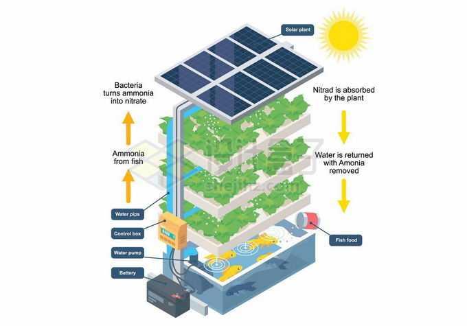 太阳能立体农业无土栽培技术种菜养鱼8127916矢量图片免抠素材免费下载