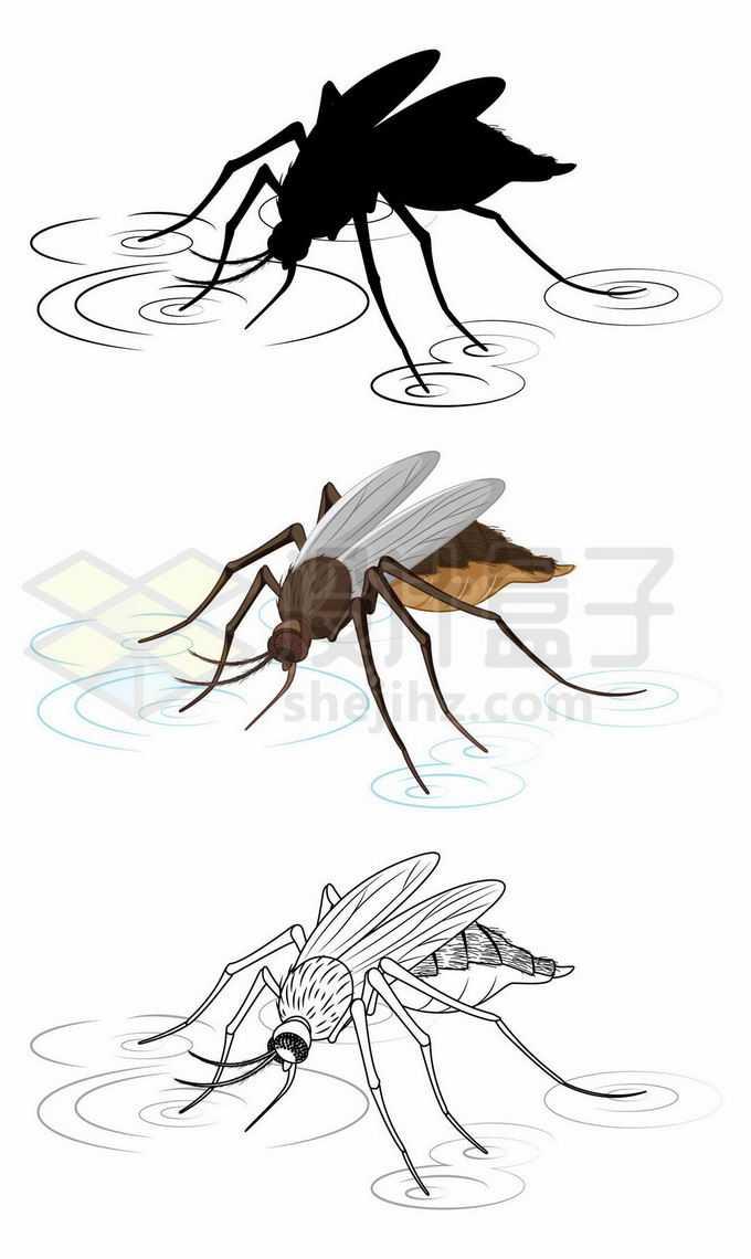 蚊子停在水面上手绘插画7495489矢量图片免抠素材免费下载