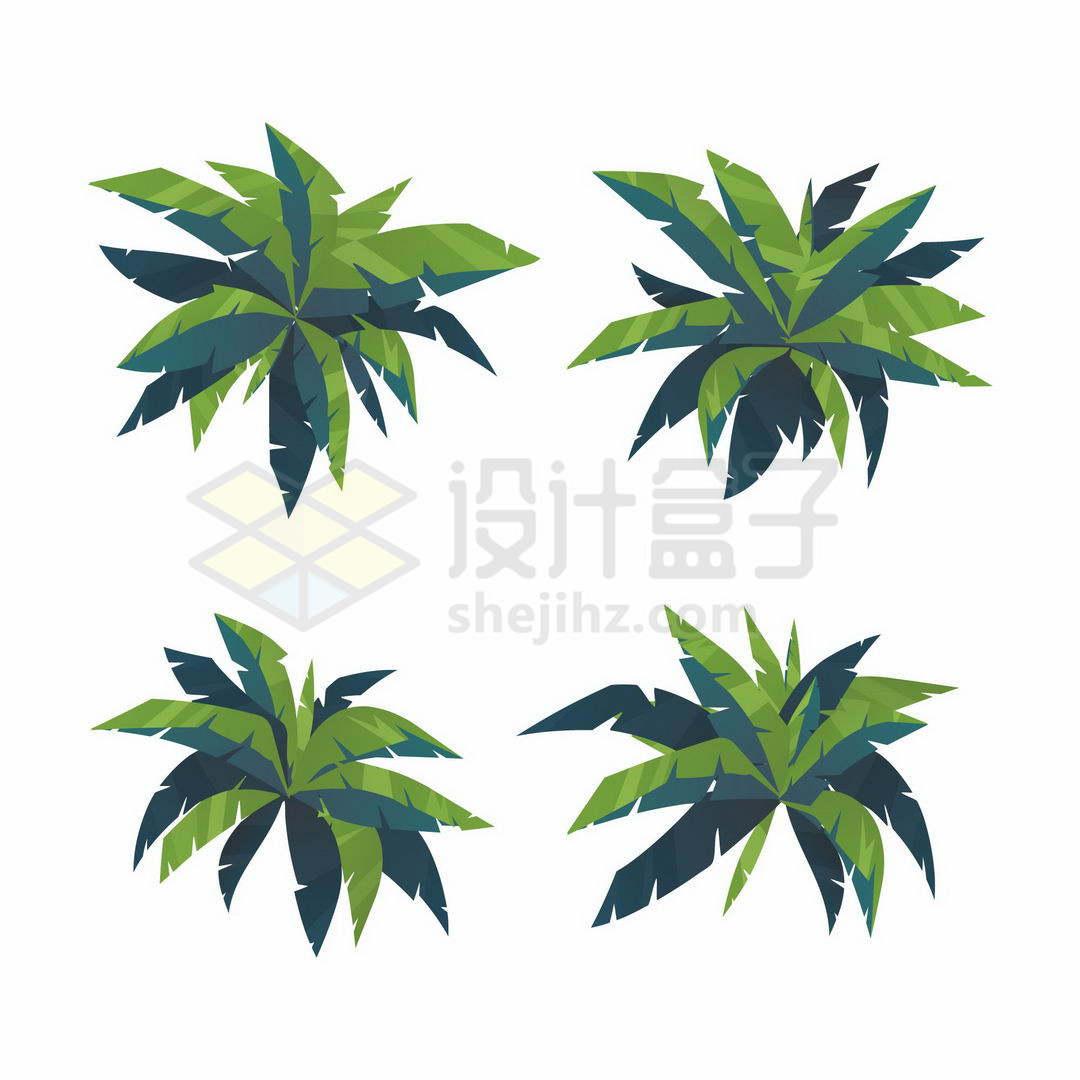 4款卡通风格椰子树树冠绿色树叶3599660矢量图片免抠素材