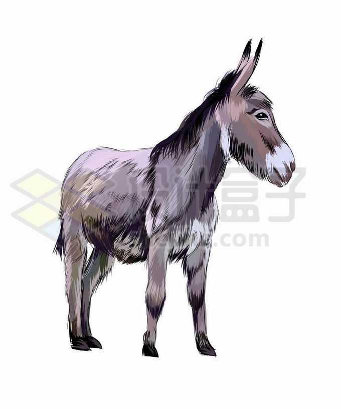 一只站立的小毛驴写实风格水彩插画5037765矢量图片免抠素材免费下载