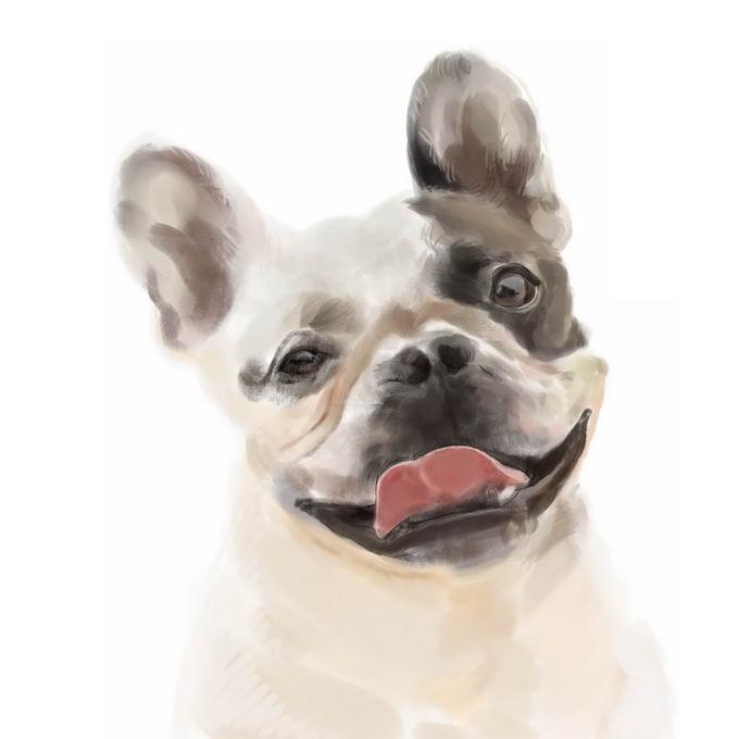 超可爱的法国斗牛犬宠物狗狗头部水彩画插画2978954矢量图片免抠素材 生物自然-第1张