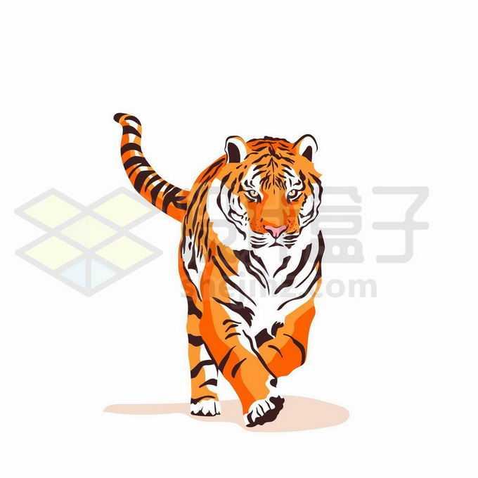 奔跑过来的大老虎彩绘插画5410083矢量图片免抠素材免费下载