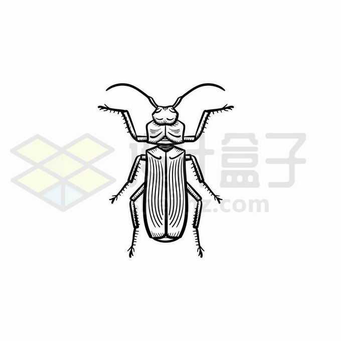 步行虫甲虫手绘线条插画2089779矢量图片免抠素材免费下载