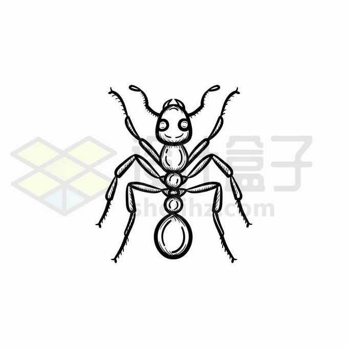蚂蚁手绘线条插画2134859矢量图片免抠素材免费下载