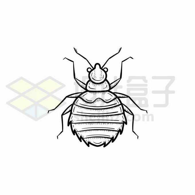 蚜虫手绘线条插画3472353矢量图片免抠素材免费下载