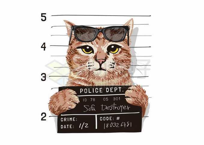 你被逮捕了拍照取证的猫咪插画8375531矢量图片免抠素材免费下载