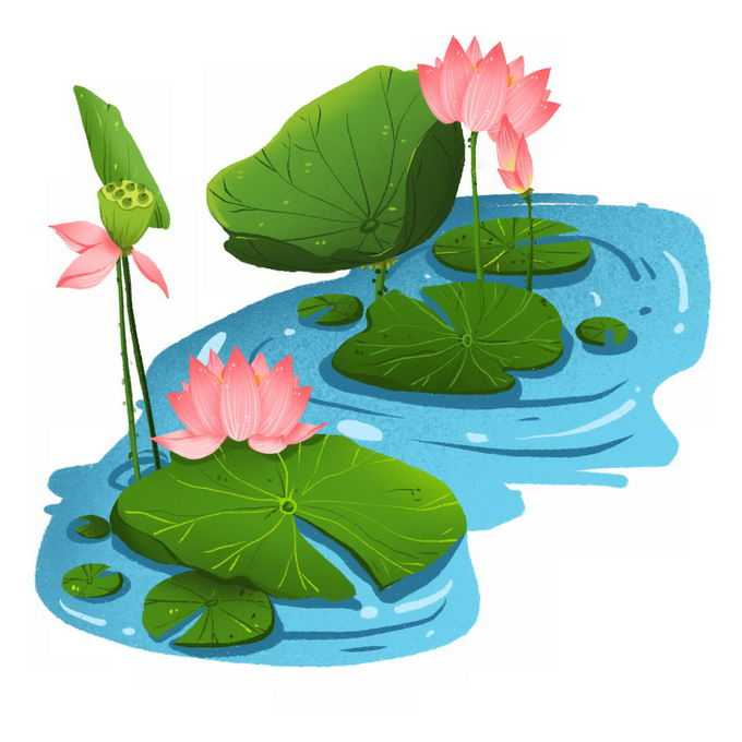 夏天蓝色池塘中盛开的荷花以及荷叶莲蓬5800382矢量图片免抠素材免费下载