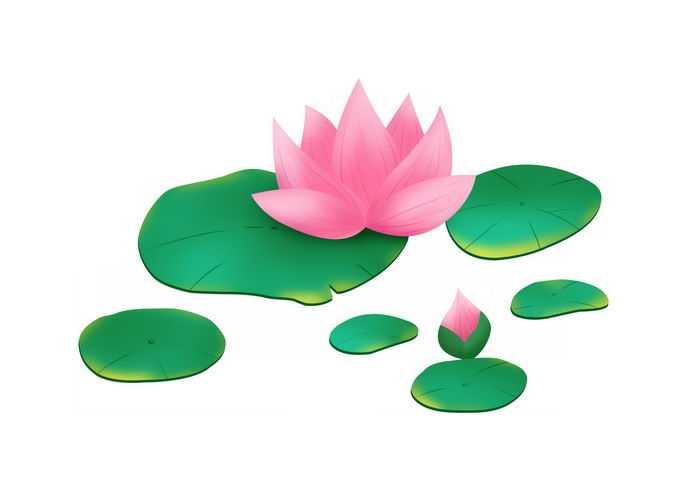 盛开的莲花和莲叶手绘插画5921540矢量图片免抠素材免费下载