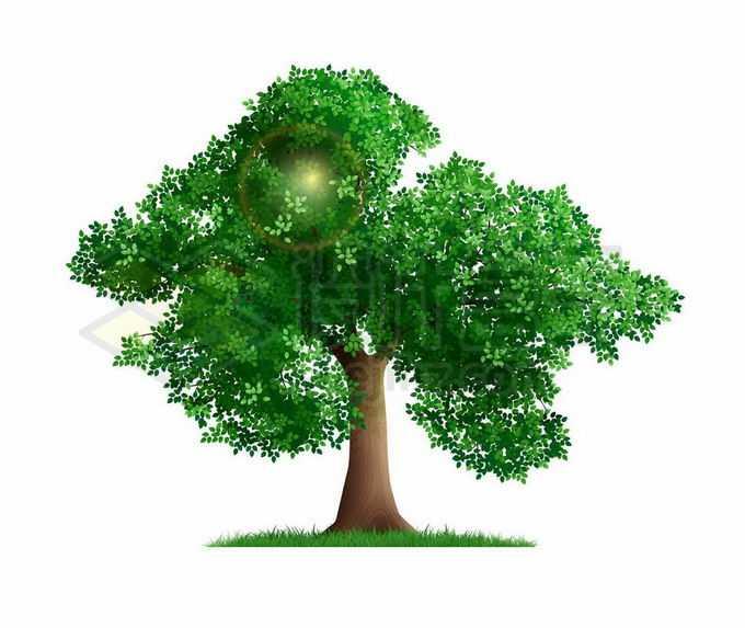 草地上的绿色大树绿树4774773矢量图片免抠素材免费下载