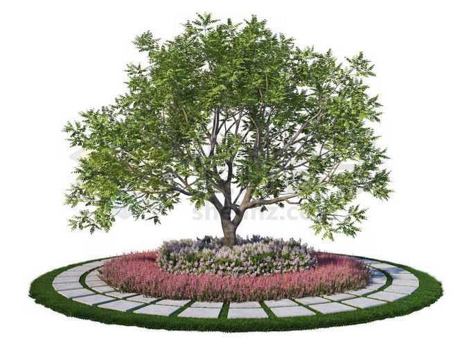 公园环形石板路面和中间的绿树9870822PSD免抠图片素材