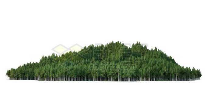 小山坡上郁郁葱葱的森林2237537PSD免抠图片素材