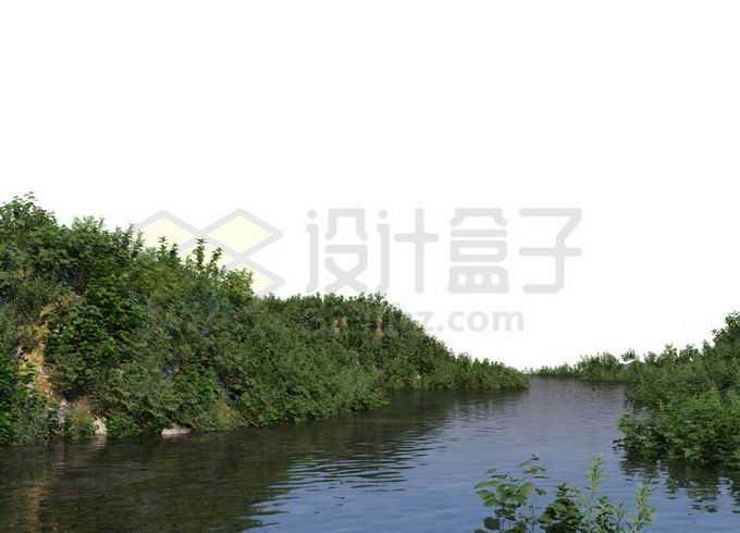 平静小河河水两岸的茂密植被灌木丛2131330PSD免抠图片素材