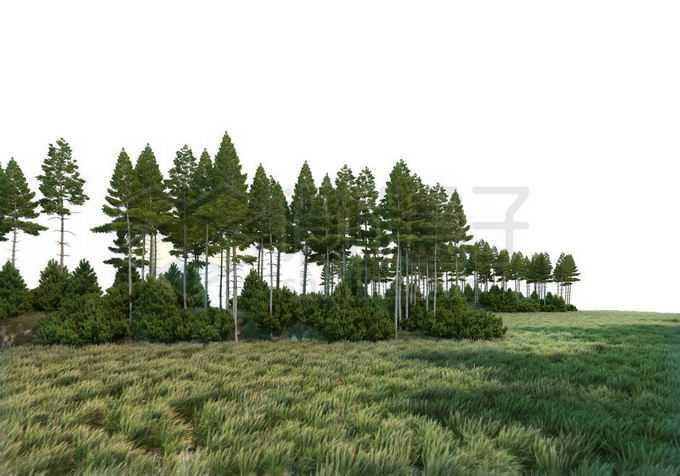 远处的树林和近处大风吹过的大草原草地景观8202167PSD免抠图片素材
