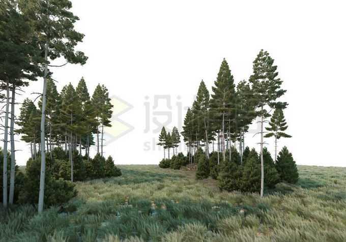 大草原上分散的一些树林和灌木丛自然景观4943634PSD免抠图片素材