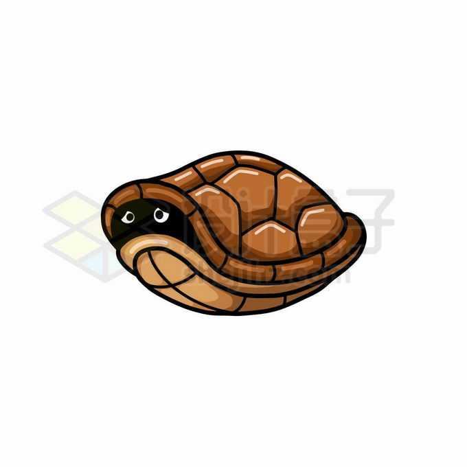 缩头乌龟把龟头缩进龟壳中暗中观察5154743矢量图片免抠素材免费下载