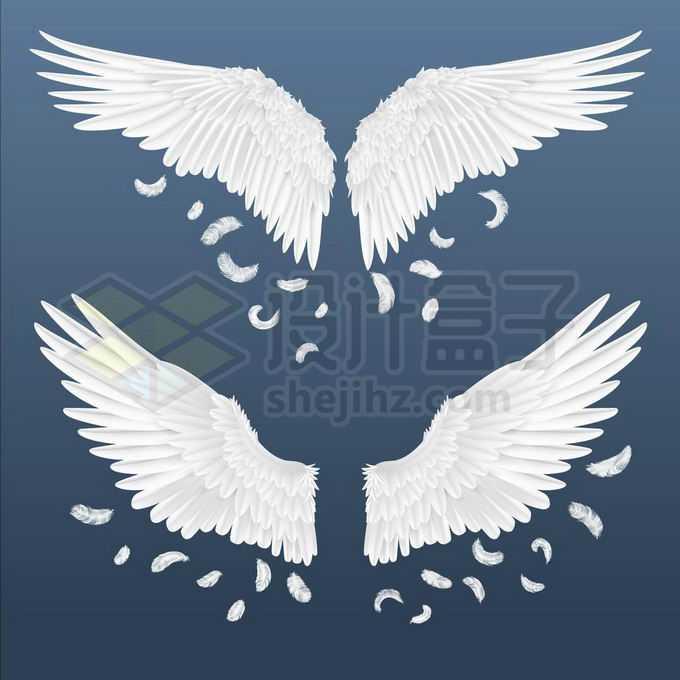 2款飘着洁白羽毛的天使翅膀鸟类翅膀3630734矢量图片免抠素材免费下载