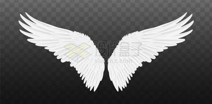 展开的白色翅膀羽毛翅膀3626114矢量图片免抠素材免费下载