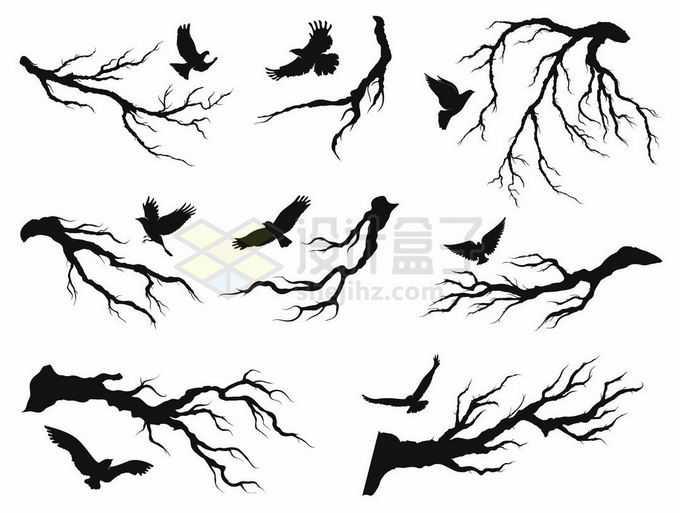 各种各样的树枝树干和乌鸦飞鸟剪影6798301矢量图片素材免费下载