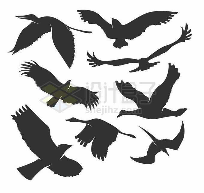 天鹅海鸥老鹰等鸟儿鸟类剪影9121328矢量图片素材免费下载