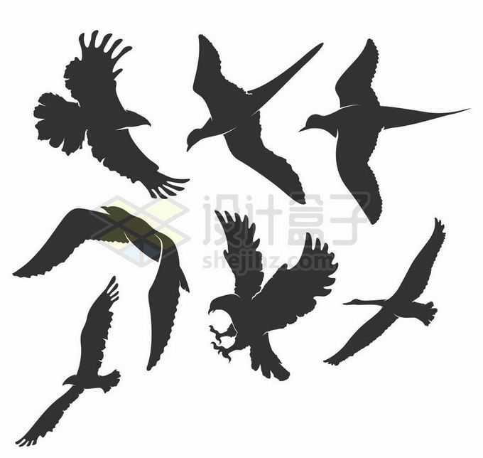 老鹰天鹅海鸥等鸟儿鸟类剪影7811483矢量图片素材免费下载