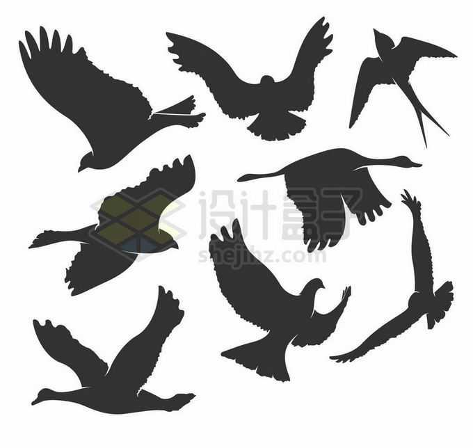 鸽子燕子鹰隼天鹅等鸟儿鸟类剪影4879205矢量图片素材免费下载