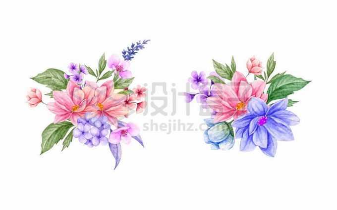 2款红色紫色花朵水彩画插画9142499矢量图片免抠素材免费下载