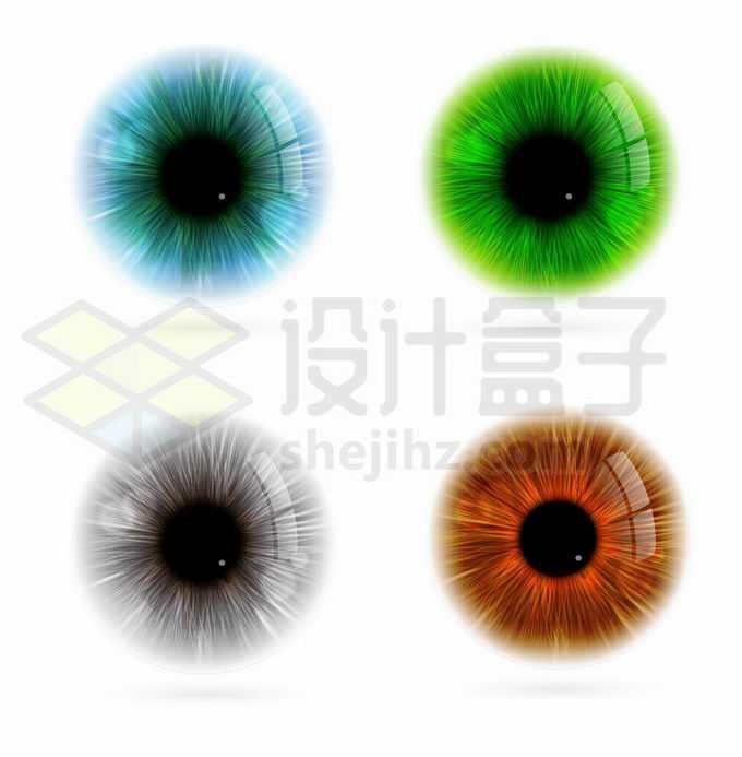 蓝色绿色灰色褐色眼睛颜色6727738矢量图片免抠素材免费下载
