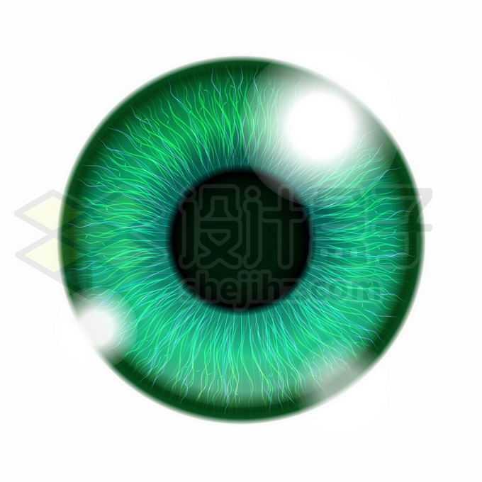 绿色的人体眼球6662999矢量图片免抠素材免费下载