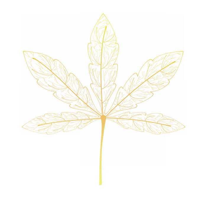 金色的树叶薄若蝉翼抽象插画2435654免抠图片素材