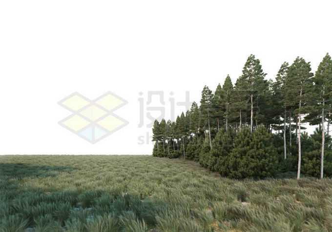 大草原和树林的分界线自然景观6614909PSD免抠图片素材