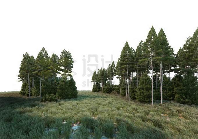 树林和大草原灌木丛分布在一起自然景观4132849PSD免抠图片素材