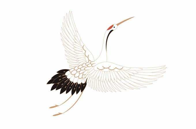 展翅的仙鹤丹顶鹤中国神鸟9779278矢量图片素材