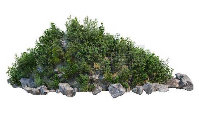 乱石堆上的杂草丛6333840PSD免抠图片素材