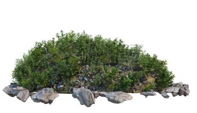 乱石堆上的草丛和低矮灌木丛2953249PSD免抠图片素材