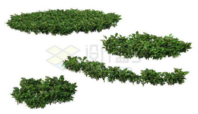 4款花园公园绿化带花圃绿色植物3164529PSD免抠图片素材