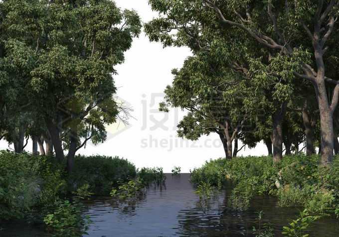 夏天树林中间的小河两岸都是大树5015600PSD免抠图片素材