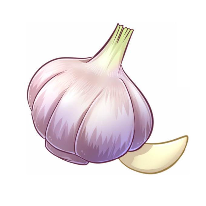淡紫色的大蒜头2183303免抠图片素材