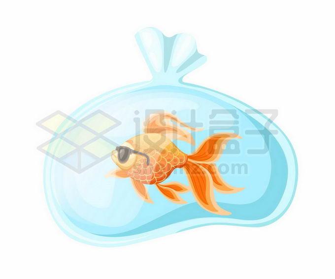 装在透明塑料袋中的金鱼6559983矢量图片免抠素材免费下载