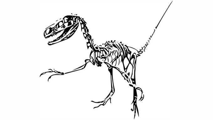 黑色盗龙骨架化石手绘图案3992438png免抠图片素材