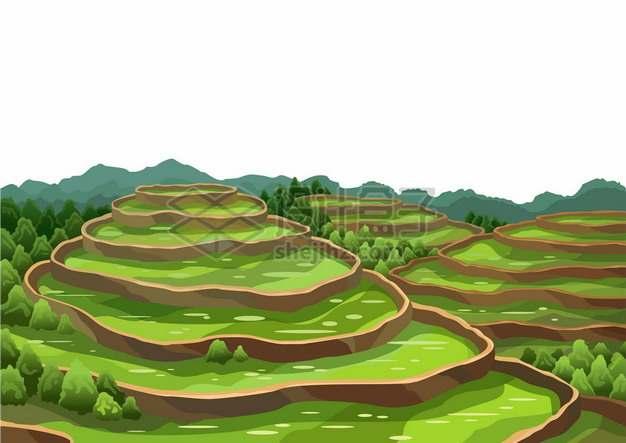 中国南方地区的梯田风景2982480矢量图片免抠素材