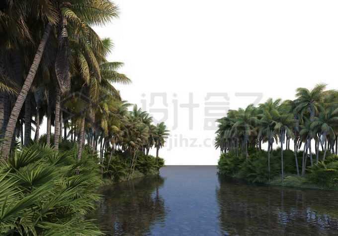 河流两岸的椰子树林热带雨林风景9459681PSD免抠图片素材