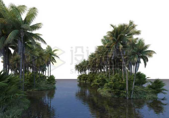 湖心小岛上的椰子树林热带雨林景观9714341PSD免抠图片素材