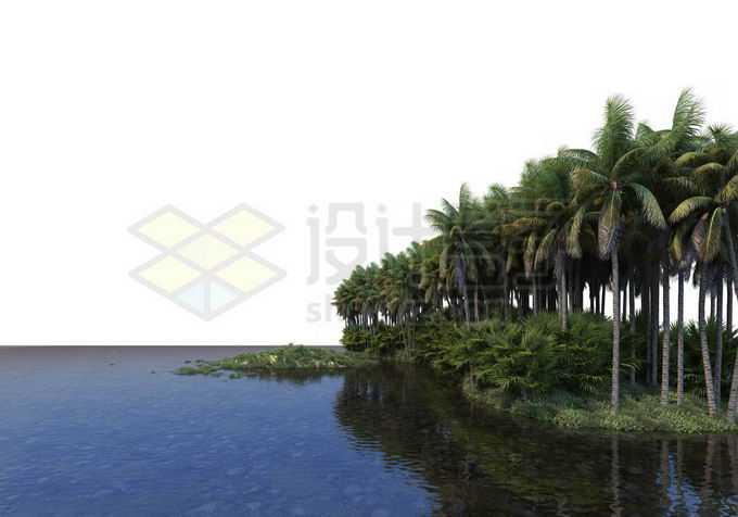 湖边水边河边的椰子树林热带雨林风光9427757PSD免抠图片素材