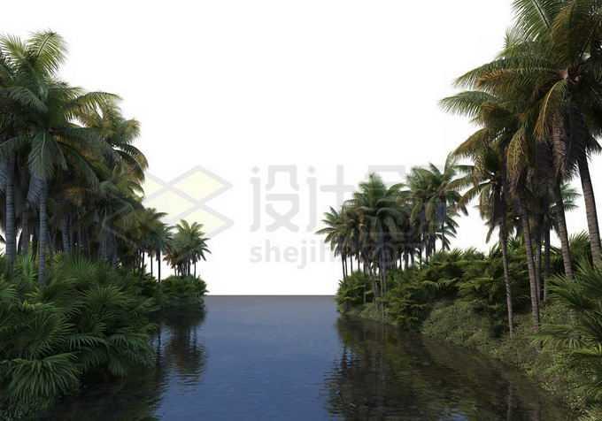 河流两岸的椰子树林热带雨林大森林风景8805995PSD免抠图片素材