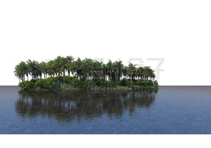 湖心小岛上的椰子树林热带雨林大森林风景9986325PSD免抠图片素材